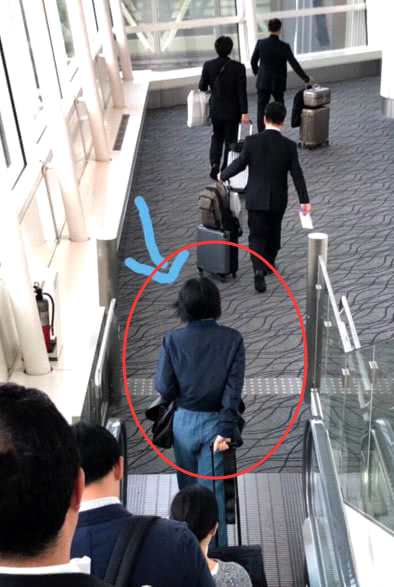 网友日本偶遇王菲独自旅行 手拉行李箱走路带风