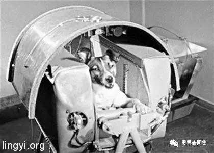 绝密!前苏联宇航员在太空的灵异经历