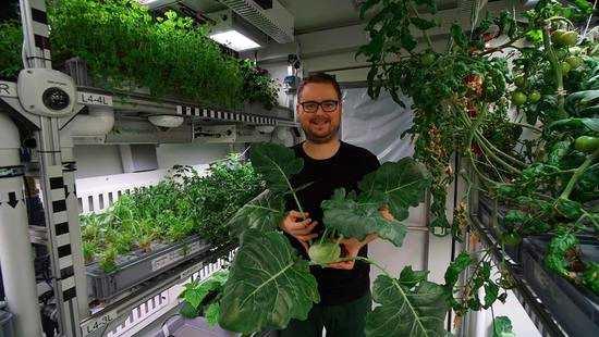 """未来的""""火星人""""不用为食物发愁了!火星上可以种植新鲜蔬菜!"""
