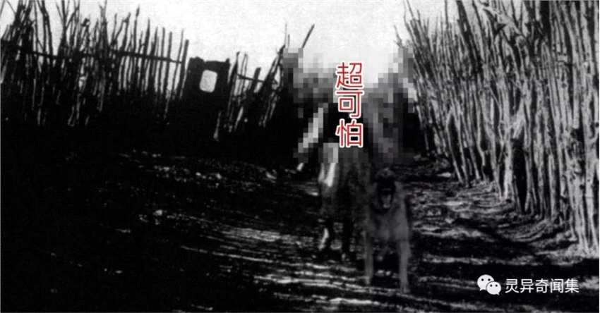 她的丈夫离奇失踪 消失前遗留下的相机底片竟出现恐怖身影网惊:真的有鬼啊