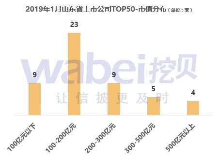 2019年1月山东省上市公司市值TOP50