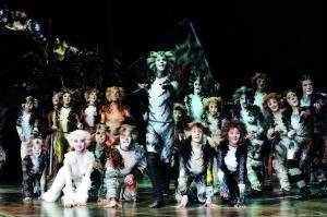 南昌:音乐剧《猫》紧急加开一场演出