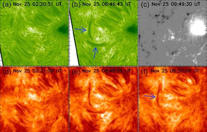 揭示太阳暗条物质来源以及传输过程的重要