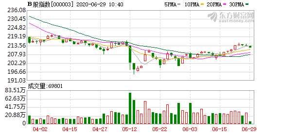 滬深B股市場小幅下跌:B股指數下跌0.67% 成份B指跌0.98%