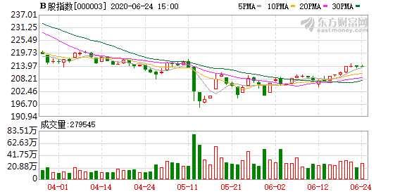 滬深B股市場小幅上漲:B股指數上漲0.02% 成份B指漲0.44%