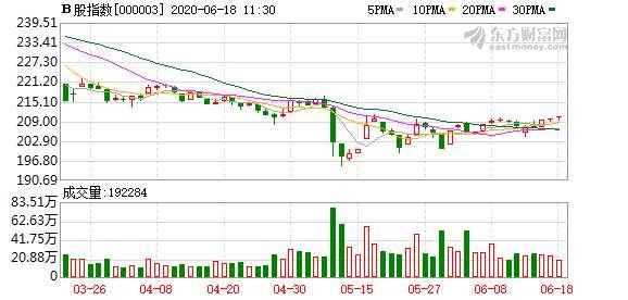 滬深B股市場窄幅震蕩:B股指數上漲0.27% 成份B指跌0.17%