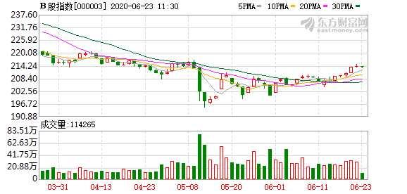 滬深B股市場走勢分化:B股指數下跌0.14% 成份B指漲0.85%