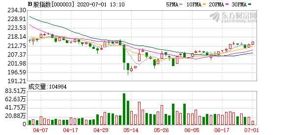 滬深B股市場小幅上漲:B股指數上漲0.66% 成份B指漲1.31%