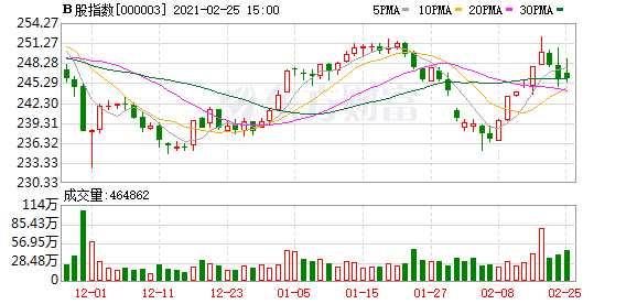 沪深B股市场收盘:B股指数下跌0.01% 成份B指上涨0.45%