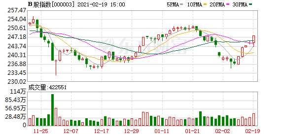 沪深B股市场收盘:B股指数上涨1.19% 成份B指上涨0.76%