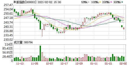 沪深B股市场收盘:B股指数下跌0.28% 成份B指上涨0.98%