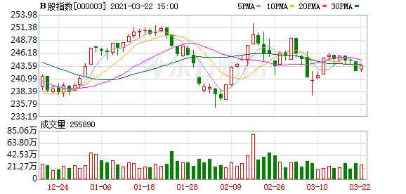 沪深B股市场收盘:B股指数上涨0.52% 成份B指上涨0.95%