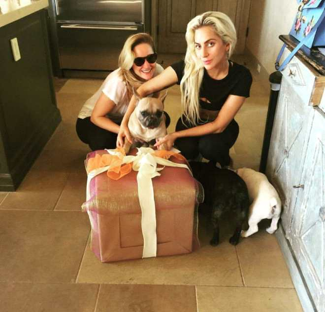 LadyGaGa发文感谢 愿将50万赏金给寻回爱犬女士