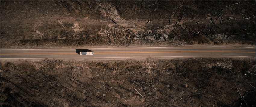 《【二号站娱乐主管】Apple TV+新片《芬奇的旅程》首曝官方中字预告》