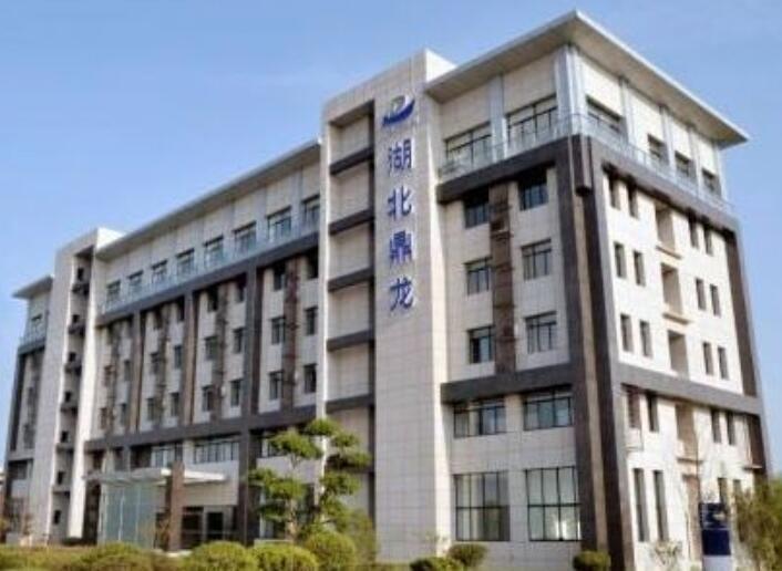 鼎龙股份控股股东朱顺全质押320万股 去年营收同比减少21%