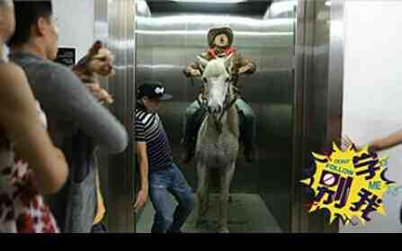任性土豪电梯遛马
