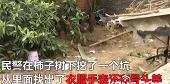 男子杀妻埋在院子柿子树下