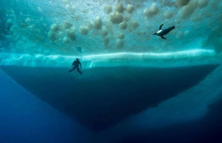 探访南极冰盖下深海世界 如梦似幻