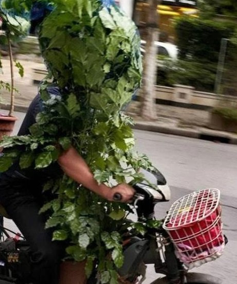 正宗绿色出行,既环保又健康