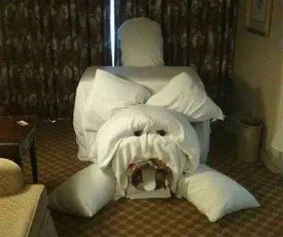宾馆里的毛巾艺术