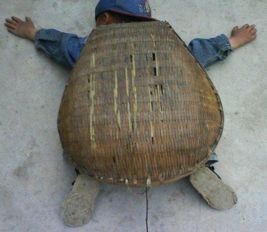 爬在地上变乌龟