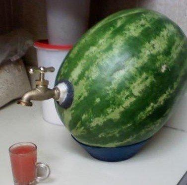 在西瓜里装上水龙头喝汁