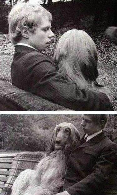 背面看是人,其实是一只狗