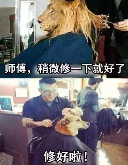 大师帮我剪头发