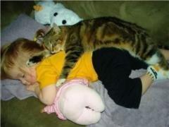 小猫抱着小孩睡觉