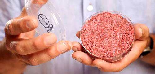 植物蛋白的兴起,以及越来越多的消费者接受替代肉类,已经帮助