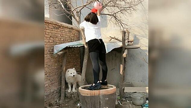 看她掉进水缸的一瞬间,差点笑出猪声