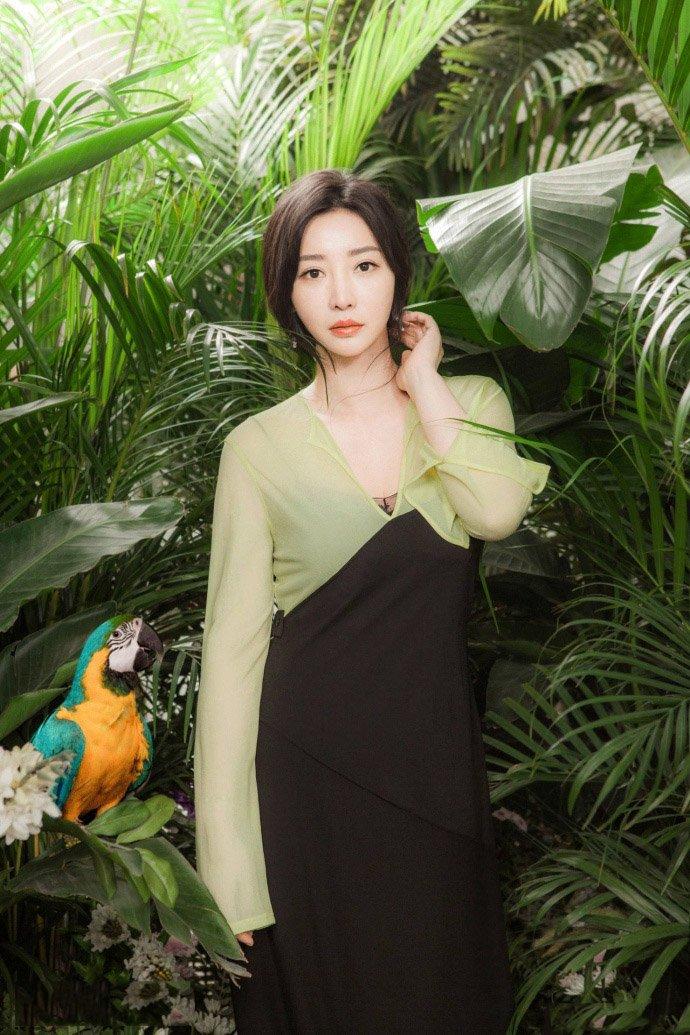 柳岩薄纱透视裙性感魅力图片