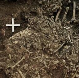 古老的瘟疫可能导致新石器时代欧洲人的衰落