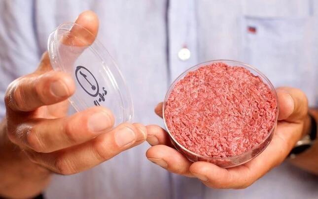 """实验室里长出的干细胞培育""""人造肉"""",你敢吃吗?"""