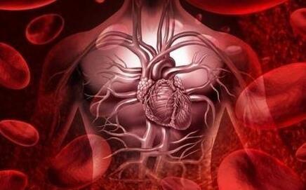 科学家们提出了追踪一个人心血管系统变化的方法