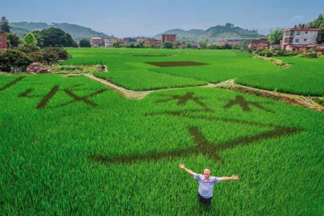 """国家生物育种产业创新?#34892;?#24320;建 将解决中国种业""""卡脖子""""技术问题"""