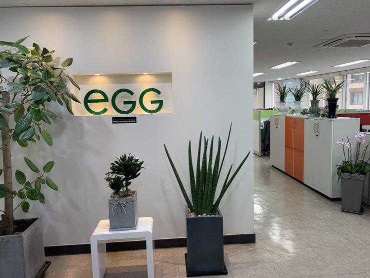 韩国「E.G.G」脱毒种薯技术,寻找中国合伙人