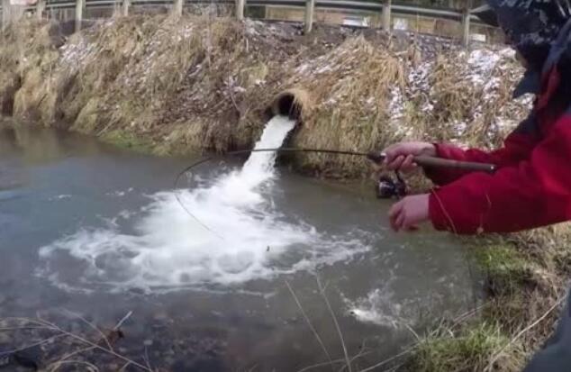 钓鱼高手告诉你:出水口处必有大鱼。