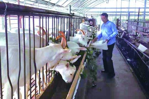 南通三創農業科技有限公司(如皋市樂享休閑農莊)積極帶動周邊村民致富