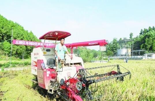 拱市村鄉村振興現代農業科技行動計劃項目迎來