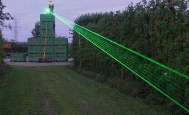 现代稻草人在马拉湾使用激光驱赶饥饿的鸟