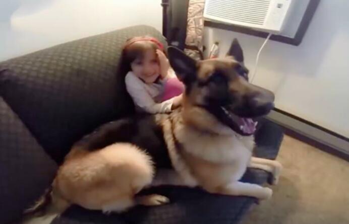 狗狗太暖心了,保护小朋友的样子太帅了