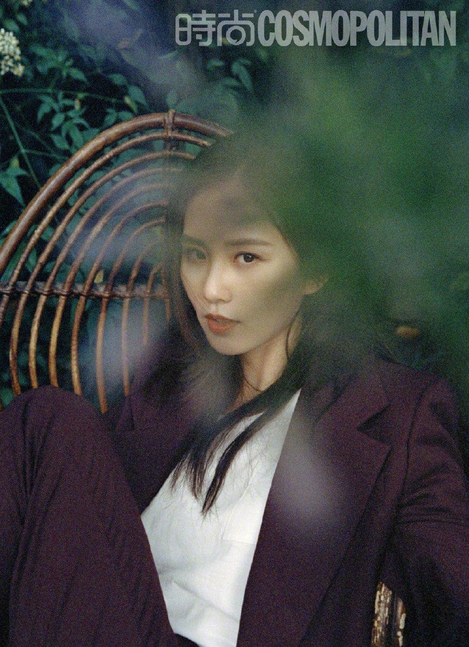 刘诗诗复古胶片风写真图片