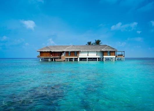 马尔代夫将向国际旅客开放了吗?马尔代夫几号开放旅游?