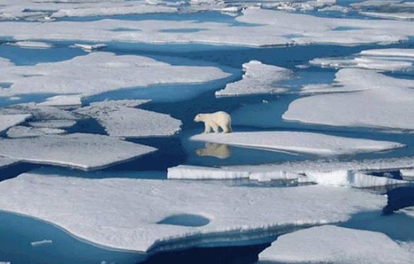 冰川融化.png