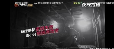刘昊然张若昀反整NPC