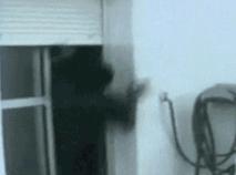 猫追耗子的游戏好玩吗