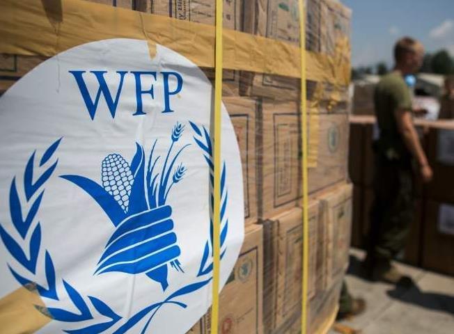 世界粮食计划署.jpg