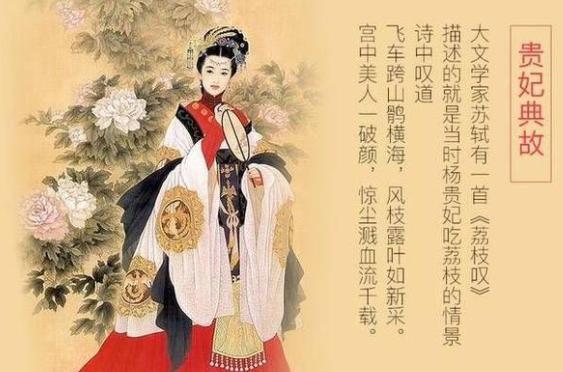 杨贵妃荔枝,为何会因为荔枝背上千古骂名?