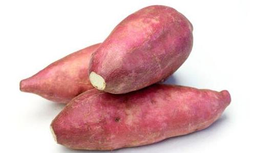 红薯与红薯的区别,红薯的功效与作用